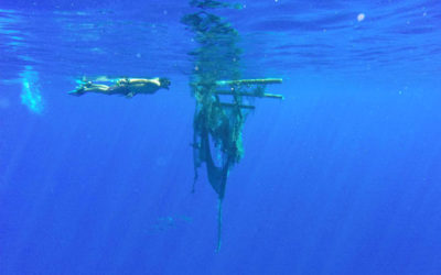 Pollution in the South Pacific Ocean affects Rapa Nui
