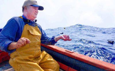 Plásticos en Atunes y en sus presas en la costa de Rapa Nui