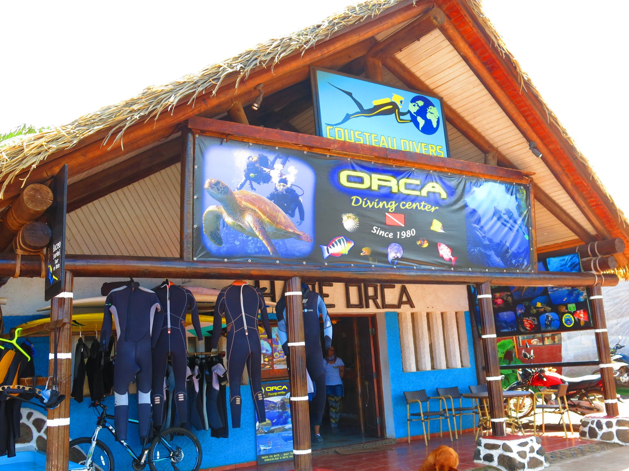 ORCA DIVING CENTER 14