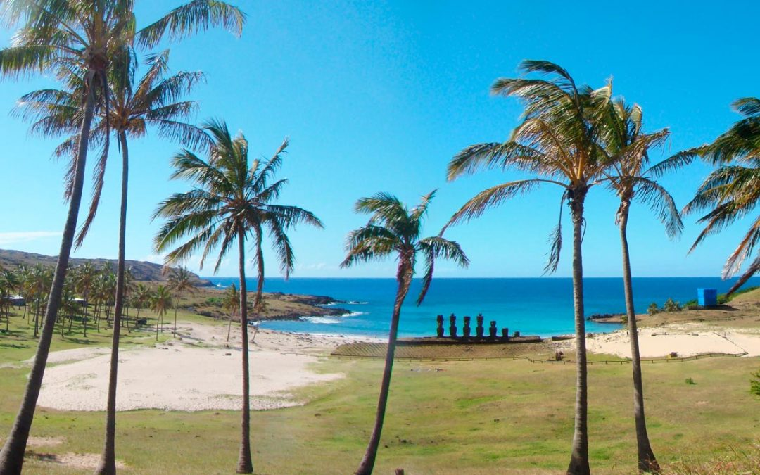 The true story of the palms of Anakena